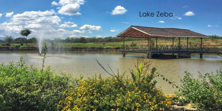 k-Lake-Zebo